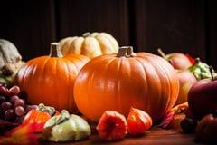 Тыквы на благодарение и хеллоуин Стоковое Изображение RF