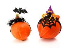 2 тыквы нося держатели костюма хеллоуина Шляпа, летучая мышь и паук ведьмы Стоковое Изображение