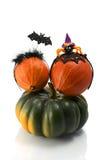 2 тыквы нося держатели костюма хеллоуина Шляпа, летучая мышь и паук ведьмы Стоковое Фото