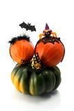 2 тыквы нося держатели костюма хеллоуина Шляпа, летучая мышь и паук ведьмы Стоковая Фотография RF