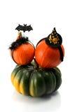 2 тыквы нося держатели костюма хеллоуина Шляпа, летучая мышь и паук ведьмы Стоковое Изображение RF