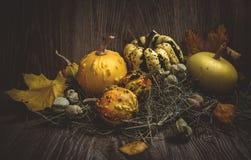 Тыквы с листьями и сеном осени Стоковые Фото