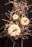 3 тыквы с соломой на деревянной предпосылке Стоковые Изображения RF