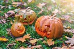Тыквы хеллоуина внешние в парке осени Стоковые Фотографии RF