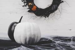 Тыквы хеллоуина в паутине Стоковое Фото