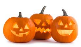 Тыквы хеллоуина на белизне Стоковое Фото