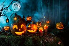 Тыквы хеллоуина на темном пугающем лесе стоковая фотография rf