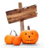 тыквы halloween Стоковая Фотография