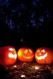 тыквы halloween Стоковое Изображение
