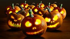 Тыквы 4K хеллоуина акции видеоматериалы