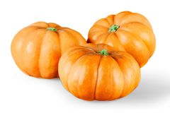 Тыквы Trhee оранжевые на белой предпосылке Стоковое фото RF