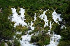Тысяча весен - Айдахо стоковые изображения