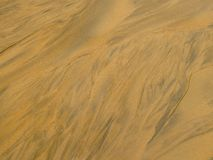 Тысяча песков шага Стоковое фото RF
