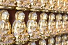 10 тысяч золотое Buddhas Стоковые Изображения