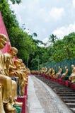 10 тысяч монастырь Buddhas (человек тучное Sze) стоковое фото