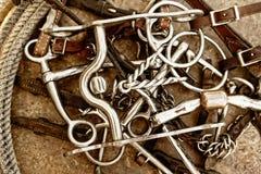 тэкс веревочки кожи лошади битов коричневый Стоковые Изображения