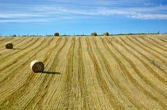тюкует голубое небо сена поля вниз Стоковое Изображение RF