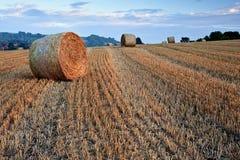 тюкует красивейший золотистый заход солнца ландшафта часа сена Стоковые Фотографии RF