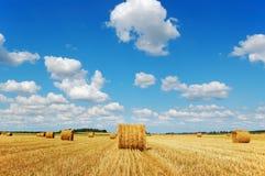 тюкует небо пасмурного золотистого сена рисуночное Стоковое Изображение RF