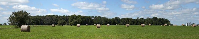 тюкует панораму земли сена поля фермы знамени Стоковое Фото