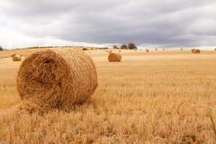 тюкует пасмурное сено поля кладя небеса вниз Стоковое Изображение RF
