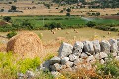 тюкует сено сельской местности стоковая фотография