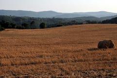 тюкует сторновку сельскохозяйствення угодье Стоковое фото RF