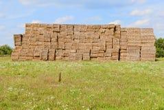 тюкует haystacks сельской местности Стоковые Фотографии RF