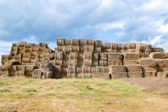 тюкует haystacks сельской местности Стоковое Изображение RF