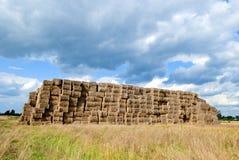 тюкует haystacks сельской местности Стоковая Фотография