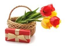 Тюльпаны букета в корзине с подарком стоковое фото