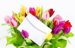 тюльпаны букета цветастые свежие Стоковые Фото
