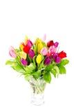 тюльпаны букета цветастые свежие Стоковые Изображения