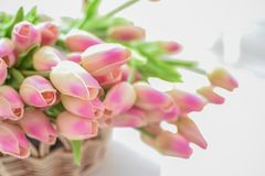 тюльпаны корзины розовые Стоковые Фотографии RF