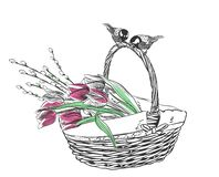Тюльпаны корзины цветут вектор гравируют изолированную карту иллюстрация вектора