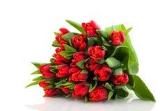 тюльпаны красного цвета букета стоковая фотография