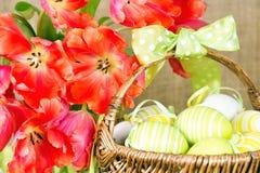 тюльпаны красного цвета пасхальныхя Стоковые Фотографии RF