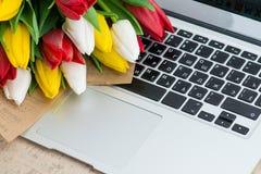 тюльпаны на компьтер-книжке стоковое изображение