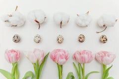 тюльпаны пасхальныхя Стоковое фото RF