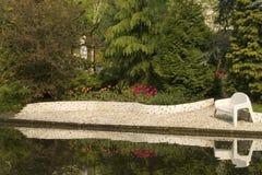 тюльпаны пруда Стоковое фото RF