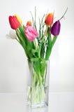 тюльпаны символов весны Стоковое Изображение RF