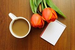 тюльпаны состава Стоковые Изображения