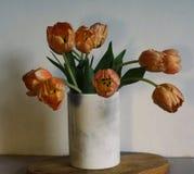 тюльпаны цветут таблица древесины стены конца-вверх букета белая Стоковое фото RF