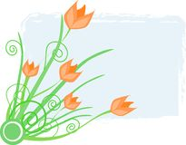 тюльпан весны иллюстрации Стоковая Фотография RF