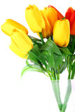 тюльпан искусственних цветков Стоковые Изображения