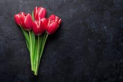 тюльпан 01 красного цвета Стоковая Фотография