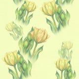 Тюльпан - состав цветков just rained картина безшовная Стоковые Изображения