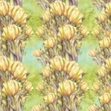 Тюльпан - состав цветков just rained Стоковые Фото
