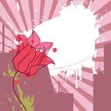 тюльпан урбанский иллюстрация вектора