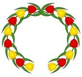 тюльпан эмблемы стоковое фото